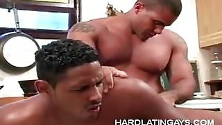 Gay Latinos Fucking In The Kitchen