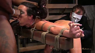 Busty Brunette, From Ass To Pussy, Ass Pussy, Very Very Long Hair, Pussy Brunette, Pussy In Hair, Pussy Bondage, Hair On Pussy