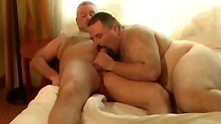 Amateur, Ass, Gay, Muscle, Daddy, Hairy, Bear, Bearboxxx, Blowjobs