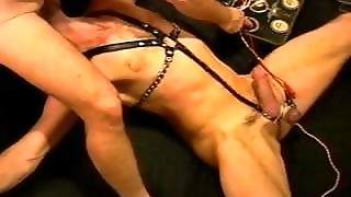 Electro Stim, Ball Sucking, Bj And Handjob In This Extreme Cbt Session.