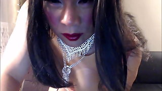 Ladyboy Shemale, Amateur Shemale, Masturbation Shemale, Lingerie Shemale, Big Tits Shemale, Hd Videos