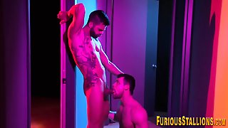 Gay, Handjob, Big Cock, Body Builders, Blowjob