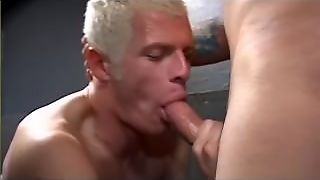 Blowjob, Gay, Orgasm, Cum Swallow, Bj, Young, Cock Sucking, Hunks, Fellatio, Cumshot, Stud