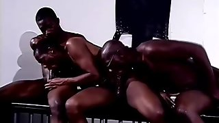 Black Studs Hot Orgy