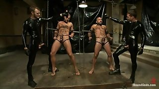 Anal, Gay Hd, H D, Wilde, Tied And Anal, Bdsm Tied Anal, Latex And Anal, Gays Gay