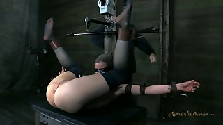 Missionary, Shaved Ass, Ass Tits, Ass And Tits, Hardcore Pussy, Pussy Brunette, Missionary Brunette, Brunette Tits