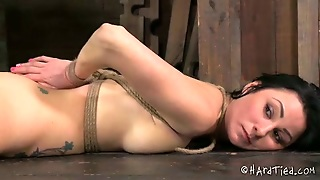 Desirable Brunette Slave Bounded With Ropes In Toyed With A Vibrator