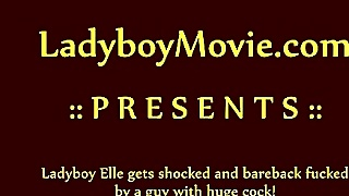 Ladyboy Elle Gets Barebacked