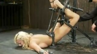 Lylith Lavey Pinned To The Wall With Metal Bondage And Machine Fucked