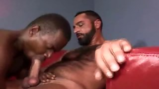 Hairy And Interracial Encounter