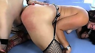 Blowjob Shemale, Shemale Fucks Shemale Shemale, Shemales Shemale, Stockings Shemale