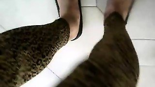 Leopard Leggings Leggings Leopardati