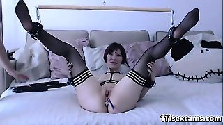 Bound Small Tits And Big Ass Camgirl In Stockings