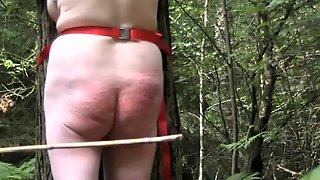 Caned In The Forest