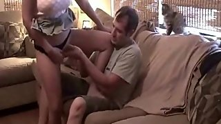 Couple, Cock, Blowjob, Fellatio, Couch, Oral Sex, Touch, Finger, Touching, Pussy, Bj