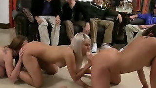 Pussies And Asses Licked