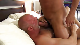 Breeding, Cum Shot, Cock Sucking, Barebcking, Rough Trade, Fucking, Big Dick, Ass Rimming, Gay