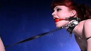 Leashed Redhead Slave Obeys Her Mistress And Takes Some Punishment