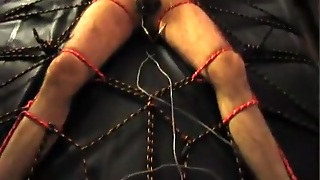 Roped Spreadeagle With Electro Hfo